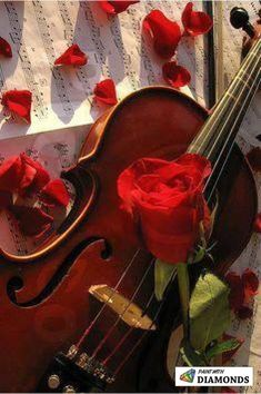 Cello with rose (Violoncelo com rosa) Piano Y Violin, Violin Music, Cello Art, Music Love, Music Is Life, New Music, Violin Photography, Music Aesthetic, Music Photo