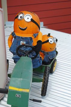Amazing pumpkin minions from @Jaime Dickover-Davison Orchards !