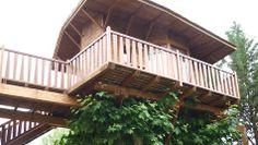 CASA DEL ARBOL HOTEL JAKUE TREE HOUSE