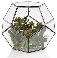 Zinc Terrarium - Contemporary - Indoor Pots And Planters - by Z Gallerie