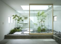 office trees indoor 5 of plants and humans share the same space in this house by suppose design office office 365 portal