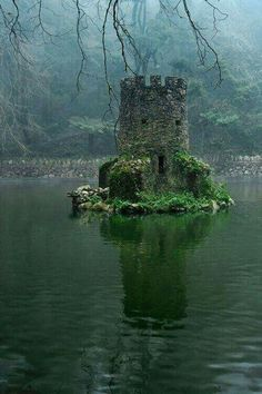 Overgrown ruins of a flooded Celtic Castle. Get your work done faster - get more clients and earn more http://youtu.be/bK7NUdh01WY