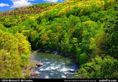 Youghiogheny River Trail Picture 034 - May 8, 2016 from Ohiopyle State Park, Pennsylvania Picture
