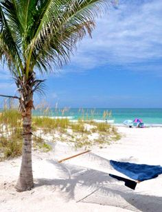 5 Best Beaches in Tampa Bay
