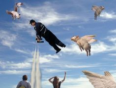 We will be free when pigs will fly. Photomontage, Pigs, Photoshop, Free, Animals, Animais, Animales, Animaux, Animal