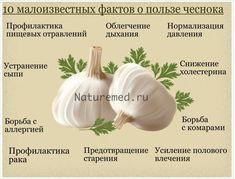 Чеснок помогает предотвратить грипп и простуду. Но на этом его полезные свойства не заканчиваются. Питание чеснок умеет и потенцию усиливать, и с отравлением несвежими продуктами бороться. Читайте более подробно http://naturemed.ru/archives/12723