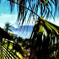 West Beach Cottages · Chalet Photos Lilacs, Beach Cottages, Fair Grounds, Photos, Travel, Viajes, Lilac Bushes, Trips, Traveling
