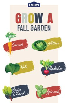 Grow a fall vegetable garden and enjoy delicious veggies without going far.