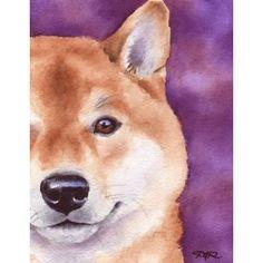 """Shiba Inu"" Dog Art Print By Artist Dj Rogers"