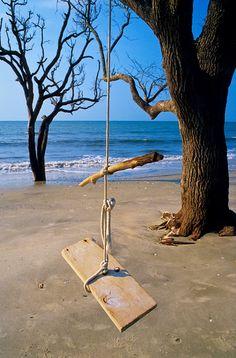 Tree Swing at the Beach, Botany Bay Plantation, Edisto Island, SC