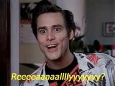 Discover & share this O&O, Inc GIF with everyone you know. Jim Carrey Meme, Jim Carrey Quotes, Funny Movies, Funny Games, Jim Carey Funny, Ace Ventura Memes, Ace Ventura Pet Detective, Bollywood Funny, Laugh Till You Cry