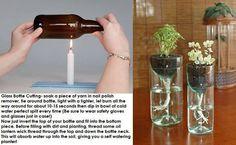 Cut bottle planter