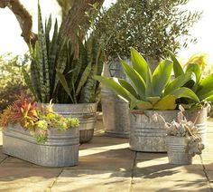 Galvanized Metal Planters. Imagine a huge group of these in various sizes together on your patio with really colorful flowers and plants....beautiful!  You can also reserve a smaller one for chilling wine, beer, and drinks :-)