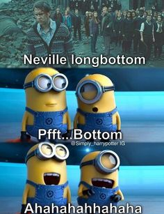 Bottom... hahahahahaahahahha