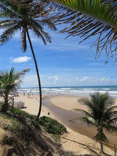 Beach at Costa do Saupe, Brazil (near Salvador)