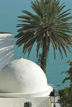Sidi Bou Said | The village of Sidi Bou Said, Tunis, Tunisia… | Kamel Agrebi | Flickr