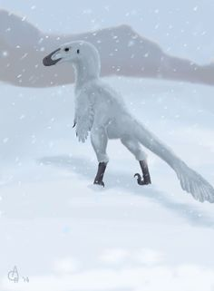 troodon snow - Google Search