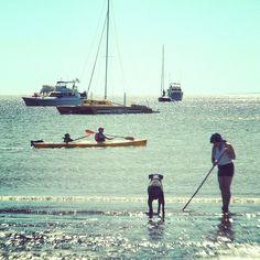 Tribune Bay Hornby Island BC