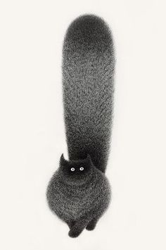 Artist Kamwei Fong is the creator of The Furry Thing series: a collection of adorable fluffy black cat ink drawings. Fluffy Black Cat, Black Cat Art, Black Cats, Cat Drawing, Crazy Cat Lady, Cool Cats, Cute Art, Illustration Art, Animal Illustrations