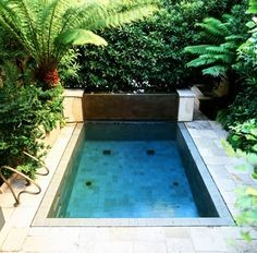 Bluestone patio and steps with brick risers deck ideas for Pool platform ideas