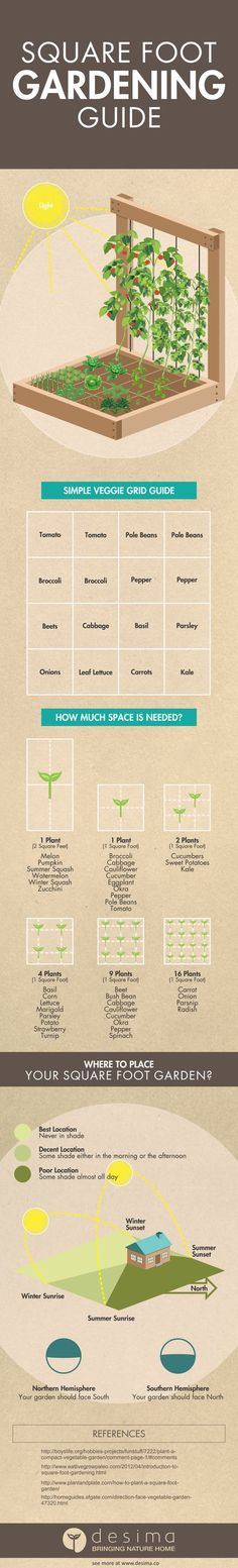 Square foot gardening infographic