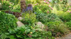 Schattengarten - Wohnen und Garten Foto