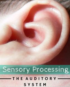 Sensory processing auditory   The Inspired Treehouse. Includes a suggested list of toys to encourage auditory stimulation. For more sensory pins, follow @connectforkids