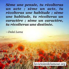 citations - Page 28 Citation Dalai Lama, Quote Citation, Jolie Phrase, Positive Attitude, Quotes About Strength, Sentences, Motivational Quotes, Religion, Mindfulness