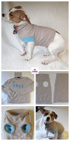 DIY Pet Coat and Sweater Free Sew Patterns & Tutorials Dog Vest, Dog Jacket, Puppy Collars, Leather Dog Collars, Dog Coat Pattern, Dog Clothes Patterns, Sewing Patterns, Dog Items, Pet Clothes