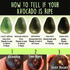 Avocado - ripeness