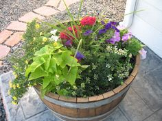 How to Plant Whiskey Barrel Planter Ideas - http://www.gorgeesdefoutre.com/how-to-plant-whiskey-barrel-planter-ideas/ : #OutdoorIdeas Whiskey barrel planter ideas are wonderful in preserving references in how to plant such simple and cheap planter design in garden along with drainage. It is going to be an awesome way to create simple whiskey barrel to become planter design especially for the limited budget. When it comes to...