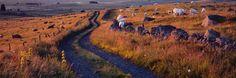 Herve Sentucq Photo panoramique : Campagne