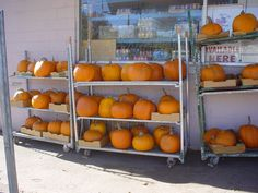 GET YOUR PUMPKIN, JACK! Browse our pumpkin patch and get carving today before Halloween arrives! Visit us at 662 Montreal Street.