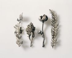 Natural Casts of Four Plants, 1540-50.Silver cast.Nuremberg.German National Museum