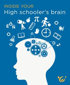 What insights can neuroscience offer parents about the mind of a high schooler?