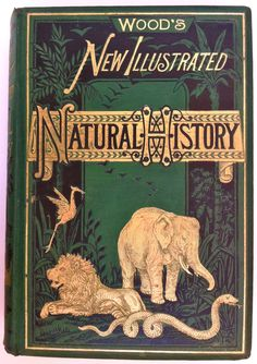 Victorian Natural History Book by J.G. Woods
