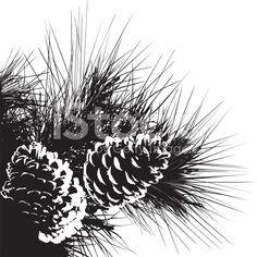 stock-illustration-8094689-pine-cones-design-elements.jpg (556×556)