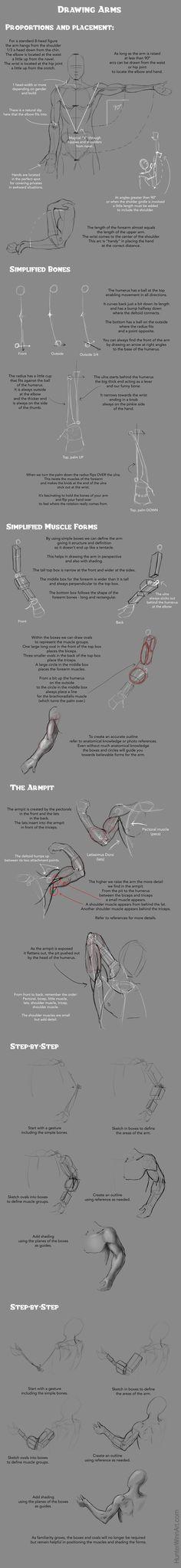 Drawing Arms Tutorial by HJWinn.deviantart.com on @DeviantArt