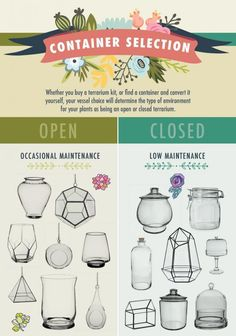 Choose the Right Container for Open Vs Closed Terrariums – Terrarium Miniature Terrarium, Terrarium Shop, Build A Terrarium, How To Make Terrariums, Garden Terrarium, Terrarium Wedding, Cactus Terrarium, Closed Terrarium Plants, Mini Terrarium