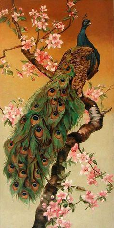 Passaro pinturas en 2019 Peacock art Colorful drawings y Bird art Peacock Images, Peacock Pictures, Bird Pictures, Peacock Pics, Peacock Wall Art, Peacock Painting, Colorful Birds, Bird Art, Beautiful Paintings