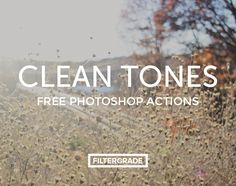 clean tones free psd photoshop actions