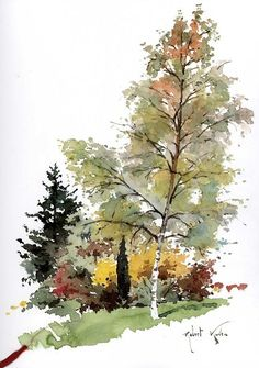 Robert Kuven- fall trees