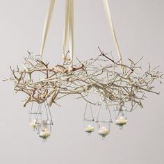 We found this branch chandelier at 'Olive and Cocoa', but there is no We are figuring with some thin floral wire you could create a wreath shape, then use ribbon to hang. Add hanging votive holders, and voila! Tree Branch Decor, Branch Chandelier, Chandelier Ideas, Chandelier Lighting, Chandeliers, Lighted Branches, Tree Branches, White Branches, Christmas Chandelier