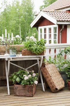 Balcony with old table, candlesticks and potted plants. Very sweet.