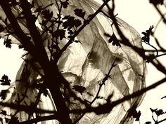 Conceptuele Kunst EdR: ff Druk