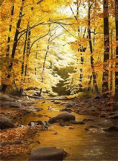 Golden reflectie