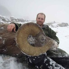 It's hard to argue that the most prestigious, regal, and recognized big game animals in North America aren't bighorn sheep. Big Game Hunting, Hunting Season, Mule Deer Hunting, Hours In A Day, Jasper National Park, Backpacking Tent, Animal Games, Rocky Mountains, Outdoor Activities