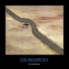 Un respeto al medio ambiente!