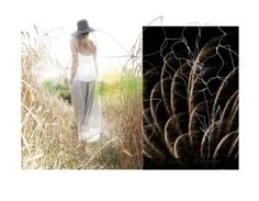 """""""Field of Dreams..........."""" by neotericstudio ❤ liked on Polyvore featuring Blume"""