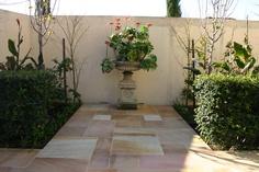 Desert Gold #Sandstone garden